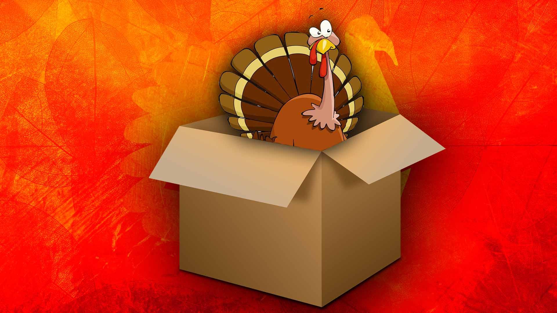 Turkey Box Purchases